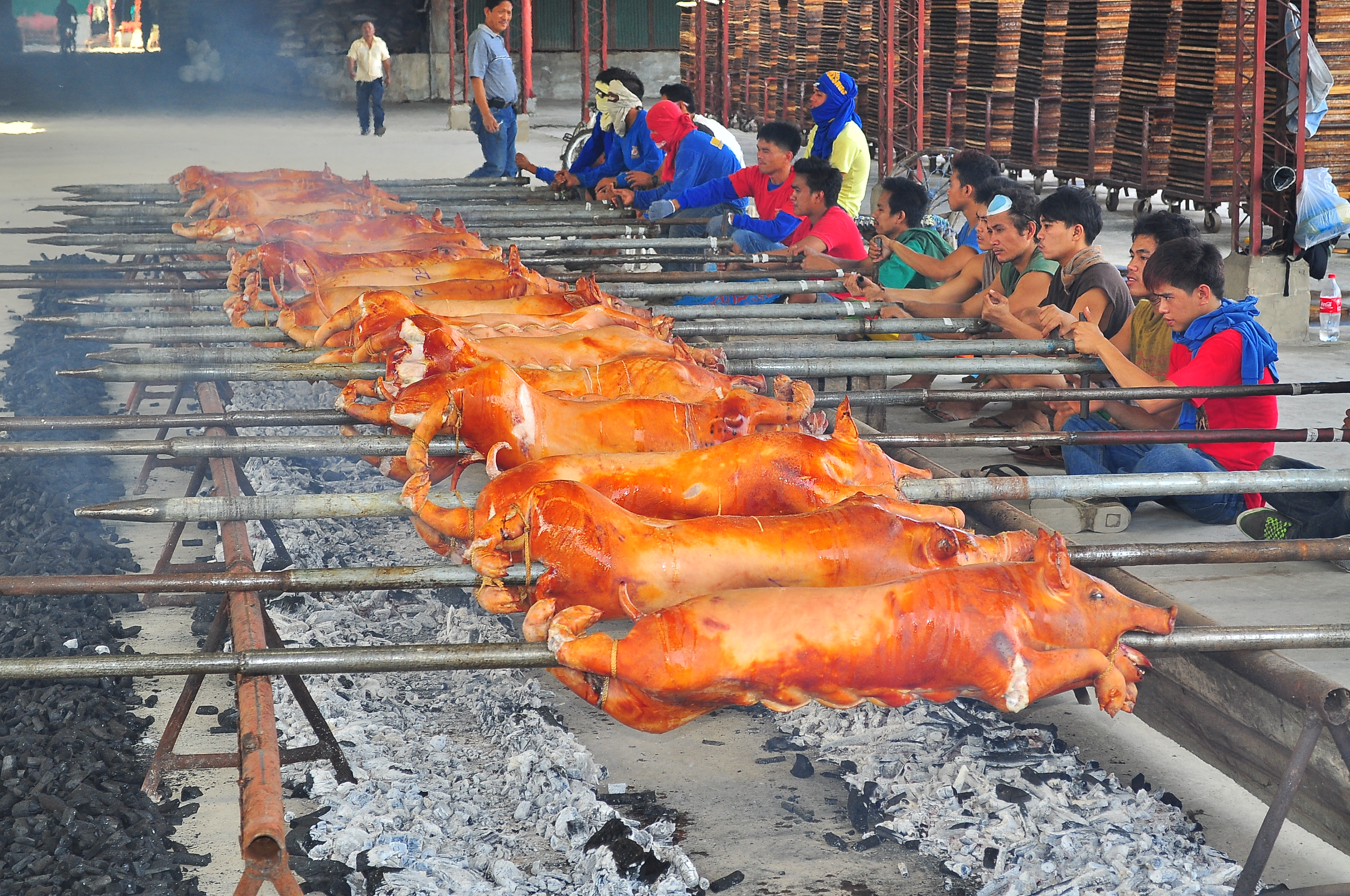 Andrew Zimmern Delicious Destinations Manila - Several pigs being roasted over coals