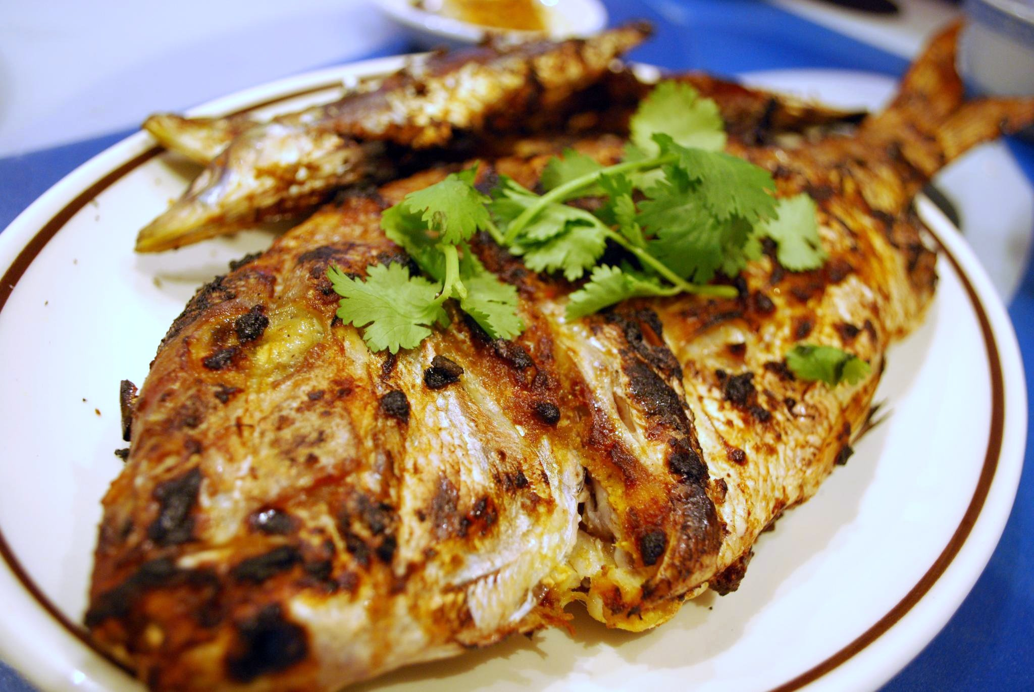 Anthony Bourdain US Heartland - Grilled Snapper - photo by Alpha under CC BY-SA 2.0