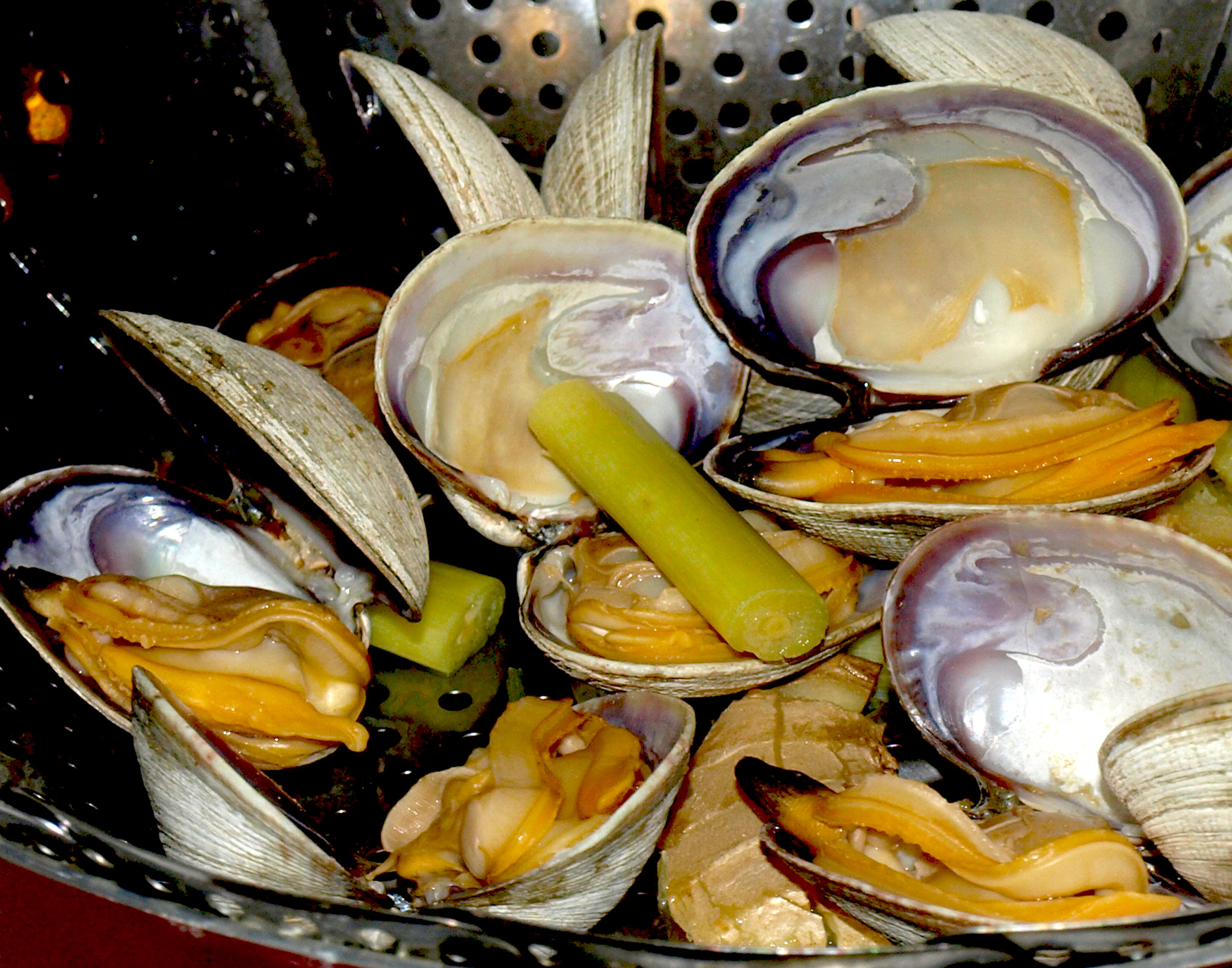 Steamer Clams - photo by Nha Le Hoan under CC BY 2.0