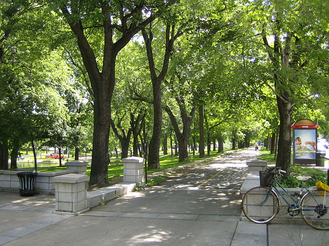 free things to do in Montreal - one of the bike paths at Parc Lafontaine - photo by Gene.arboit under CC-BY-SA-3.0-migrated
