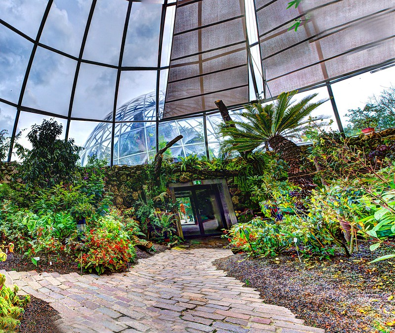 free things to do in Zurich - Botanical Garden of the University of Zurich - photo by Wendelin Jacober under CC BY 2.0