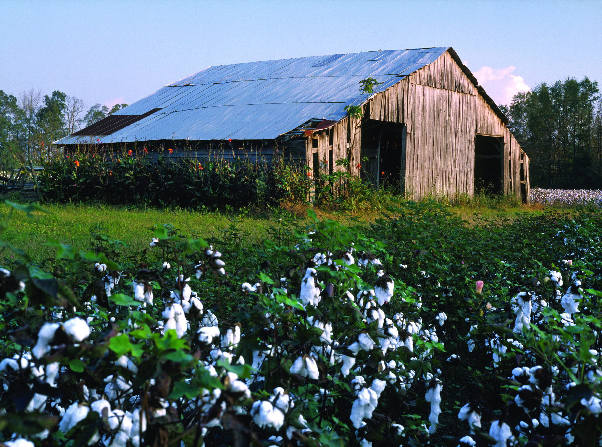 Anthony Bourdain Mississippi Delta - Mississippi Delta Cotton Barn - photo by Visit Mississippi under CC BY-ND 2.0
