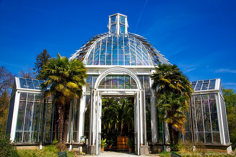 Free things to do in Geneva - Greenhouse at the Conservatory and Botanical Garden of the City of Geneva - photo by Torbjorn Toby Jorgensen under CC-BY-SA-2.0