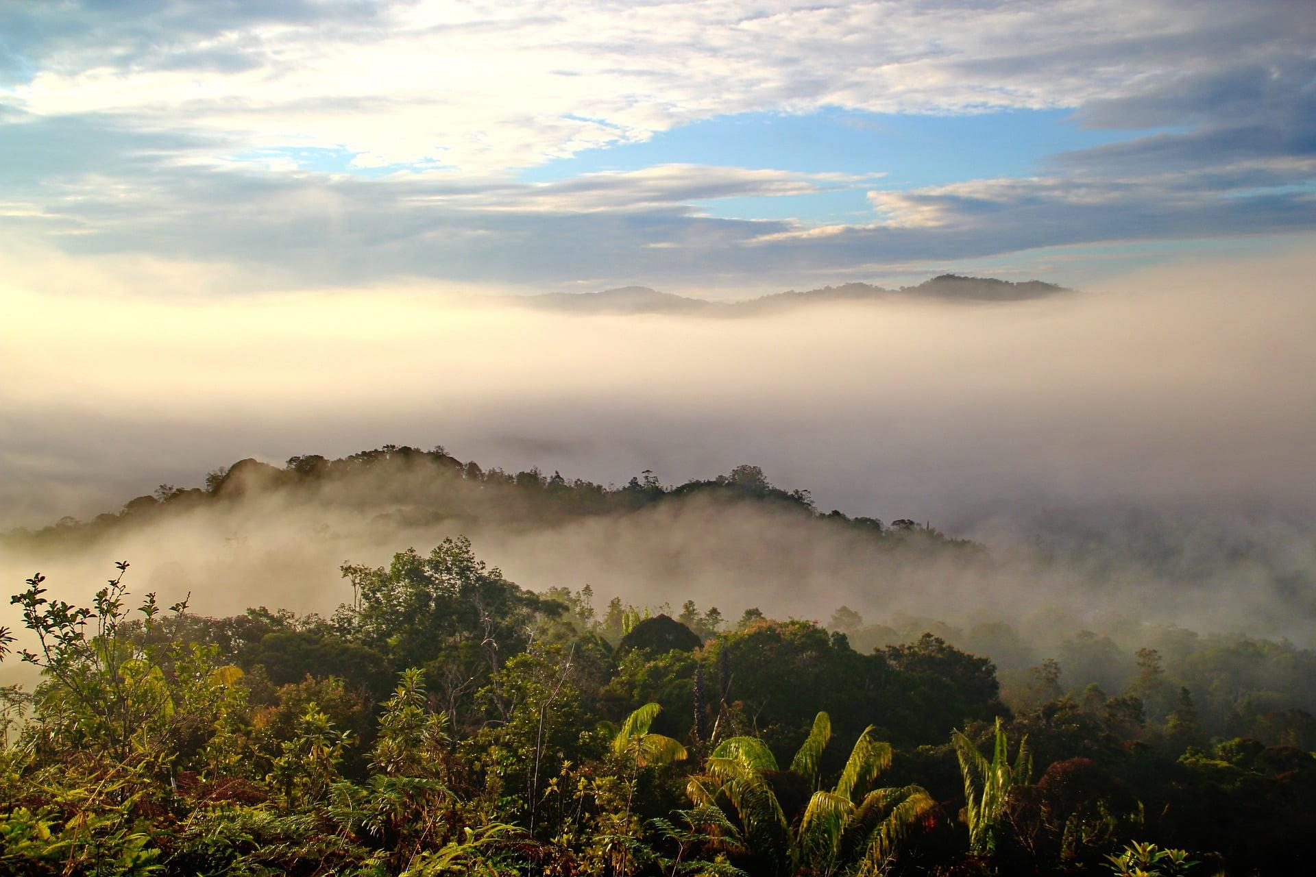 Sarawak (Malaysian State in Borneo) - photo by labanglonghouse under Pixabay License