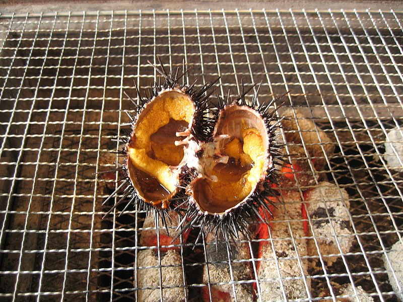 Anthony Bourdain Senegal - Grilled Sea Urchin - photo by サフィル under CC-BY-SA-4.0