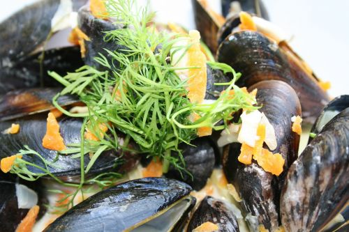 Mussels Chakapuli - photo by AnnRos under Pixabay License